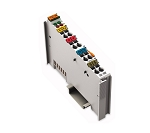 750-466 | Wago | 2-channel Analog Input Module
