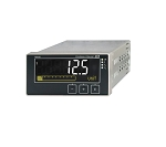 RIA45-A1C1 | Endress+Hauser | RIA45 Panel meter
